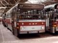 654-5 DAF-Hainje -a