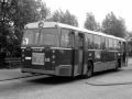 635-3 DAF-Hainje -a