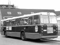 739-2 DAF-Hainje -a