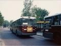 729-7 DAF-Hainje -a