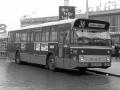 751-1 DAF-Hainje -a