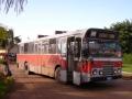 774-12 DAF-Hainje -a