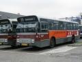 916-2 DAF-Hainje recl -a