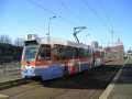 706-P01-recl-a