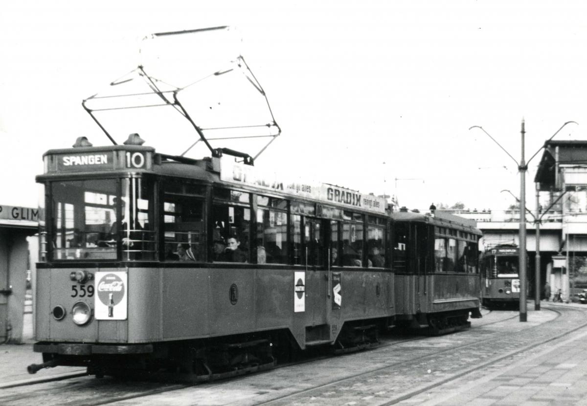 559-V-304a