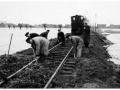 RTM 1953 Watersnoodramp-1 -a