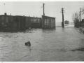 RTM 1953 Watersnoodramp-2 -a