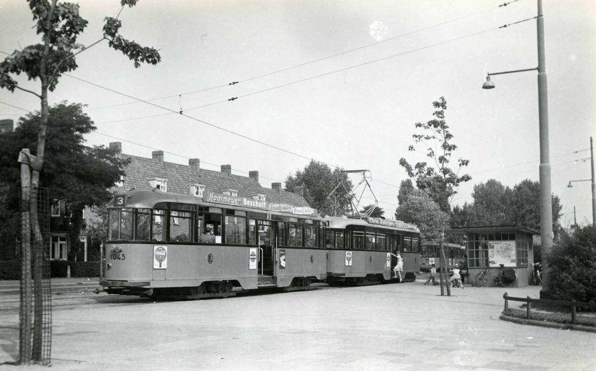 Groenezoom 1955-1 -a