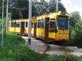 Groene Tuin 2006-3 -a