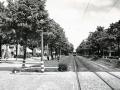 Groenezoom 1941-A -a