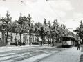 Groenezoom 1948-A -a
