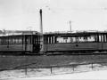 Groenezoom 1950-B -a