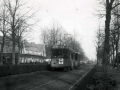 Groenezoom 1951-B -a
