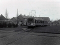 Groenezoom 1951-D -a