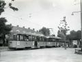 Groenezoom 1955-A -a
