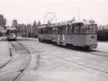 Groenezoom 1957-D -a