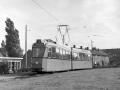 Groenezoom 1957-F -a