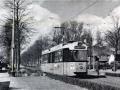 Groenezoom 1962-B -a