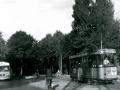 Groenezoom 1964-B -a