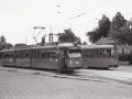 Groenezoom 1965-B -a