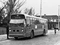 Groenezoom 1966-E -a
