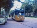 Groenezoom 1967-B -a