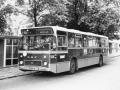 508-3 DAF-Hainje -a