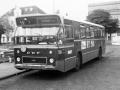 510-3 DAF-Hainje -a