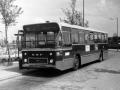 515-3 DAF-Hainje -a
