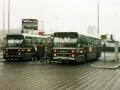 517-3 DAF-Hainje -a