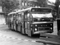 527-2 DAF-Hainje -a