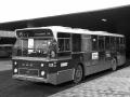 528-3 DAF-Hainje -a