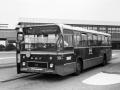 504-4 DAF-Hainje -a