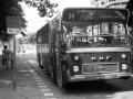 530-3 DAF-Hainje -a