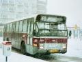 809-2 DAF-Hainje -a