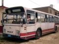 817-10 DAF-Hainje -a