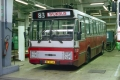 133-6 DAF Hainje -a