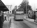 203-2a-Leyland-Panther-Hainje