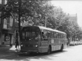 219-2a-Leyland-Panther-Hainje