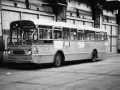 223-04-Leyland-Triumph-Werkspoor-a