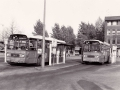 226-4a-Leyland-Panther-Hainje