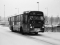 227-3a-Leyland-Panther-Hainje