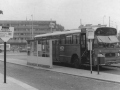 231-3a-Leyland-Panther-Hainje