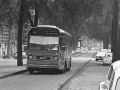 238-2a-Leyland-Panther-Hainje
