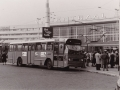 205-8a-Leyland-Panther-Hainje