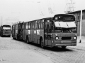 221-2a-Leyland-Panther-Hainje