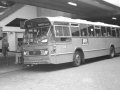 223-3a-Leyland-Panther-Hainje