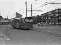 229-1a-Leyland-Panther-Hainje