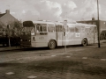 230-2a-Leyland-Panther-Hainje