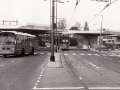 231-2a-Leyland-Panther-Hainje